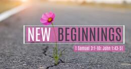 """New Beginnings"" (cont.)"
